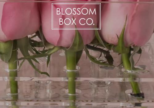 Mit einem Gutschein von Blossom-Box sparen